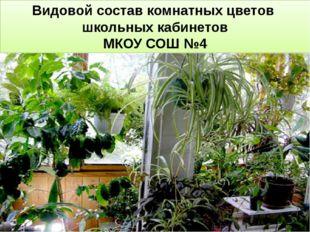 Видовой состав комнатных цветов школьных кабинетов МКОУ СОШ №4