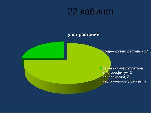 22 кабинет