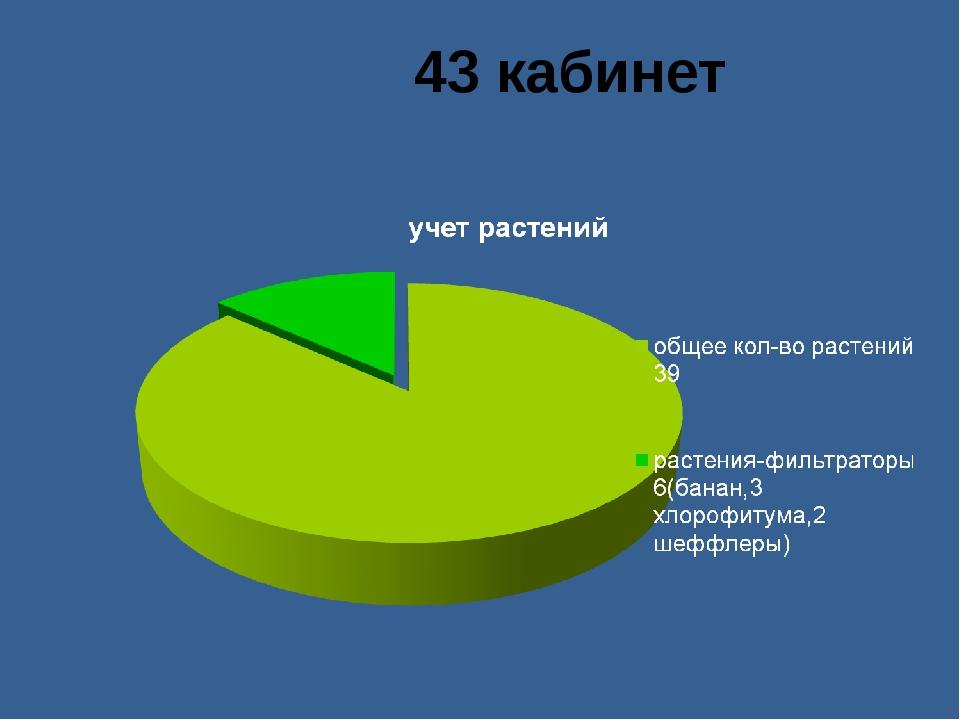 43 кабинет
