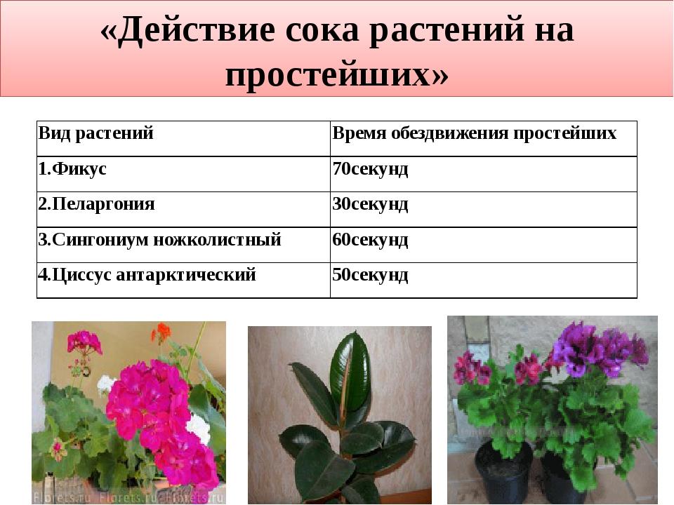 «Действие сока растений на простейших» Вид растений Время обездвижения прост...