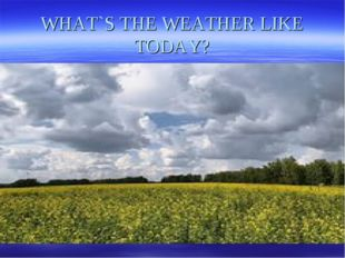 WHAT`S THE WEATHER LIKE TODAY?