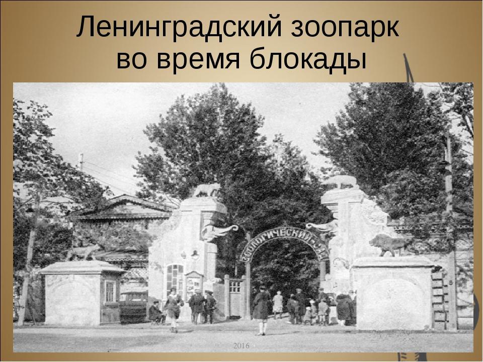 Ленинградский зоопарк во время блокады 2016 2016