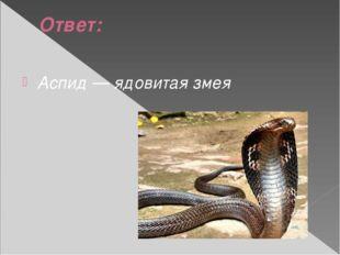 Ответ: Аспид — ядовитая змея