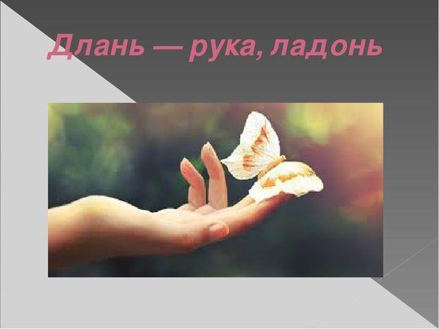 Длань — рука, ладонь