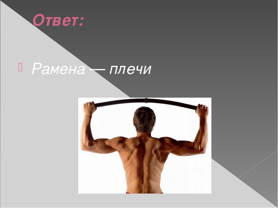 Ответ: Рамена — плечи