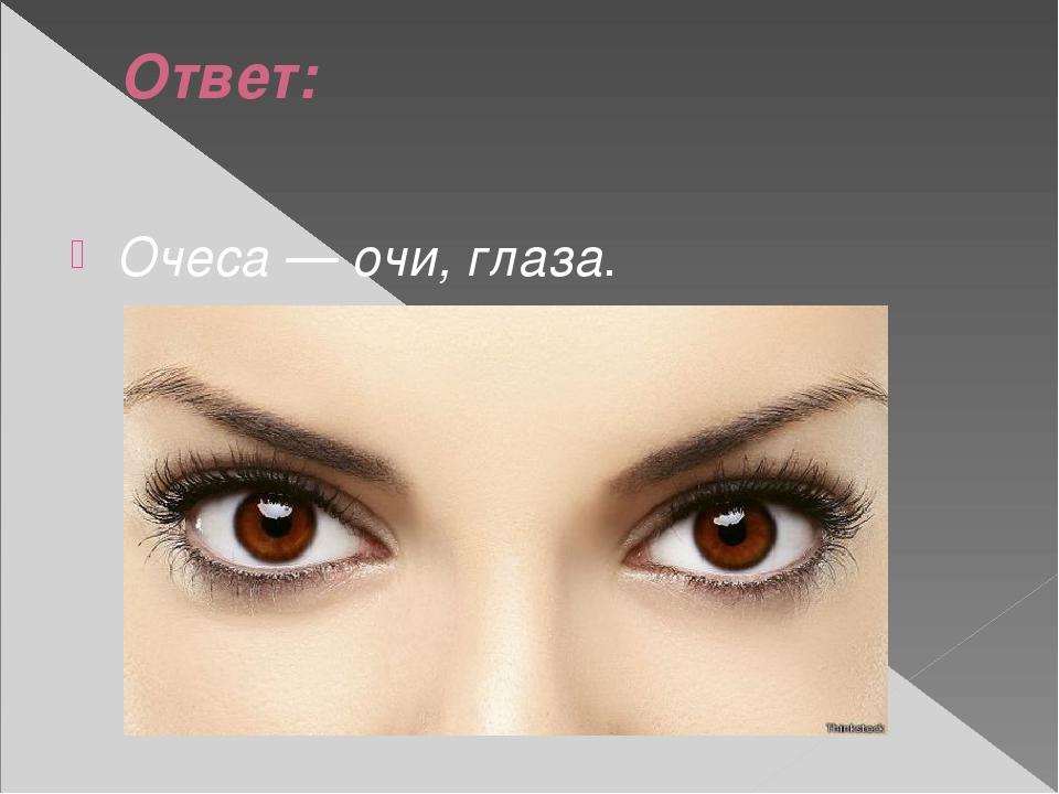 Ответ: Очеса — очи, глаза.