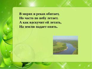 В морях и реках обитает, Но часто по небу летает. А как наскучит ей летать, Н