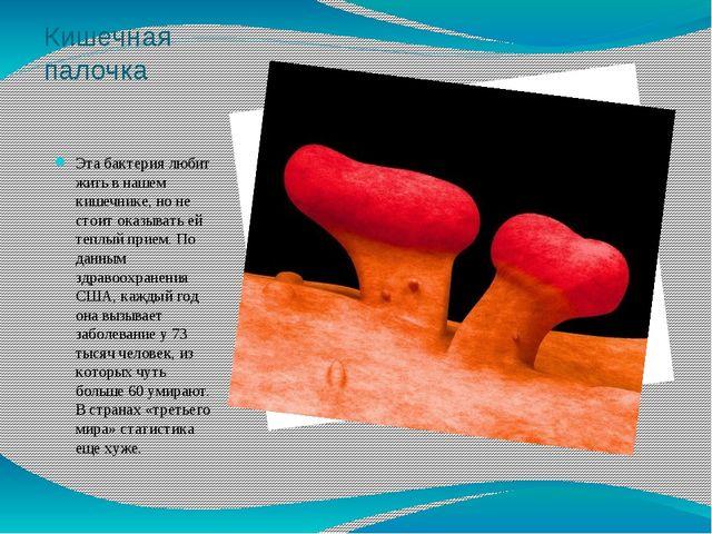 Кишечная палочка Эта бактерия любит жить в нашем кишечнике, но не стоит оказы...