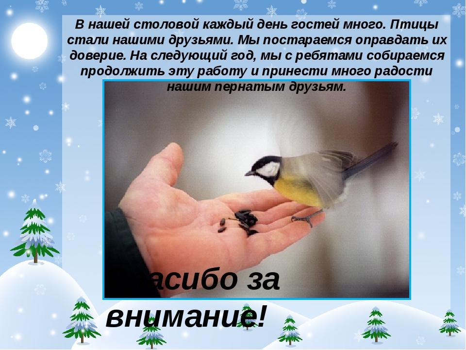В нашей столовой каждый день гостей много. Птицы стали нашими друзьями. Мы по...