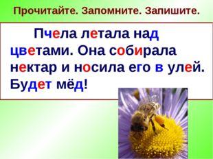 Прочитайте. Запомните. Запишите. Пчела летала над цветами. Она собирала некта