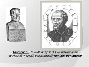 Теофраст (371—286 г. до Р. Х.) — знаменитый греческий ученый, называемый «отц