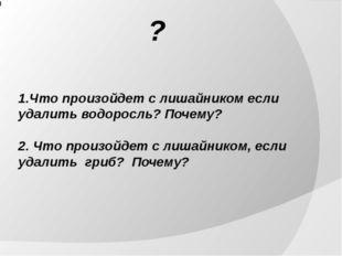 1.Что произойдет с лишайником если удалить водоросль? Почему? 2. Что произой