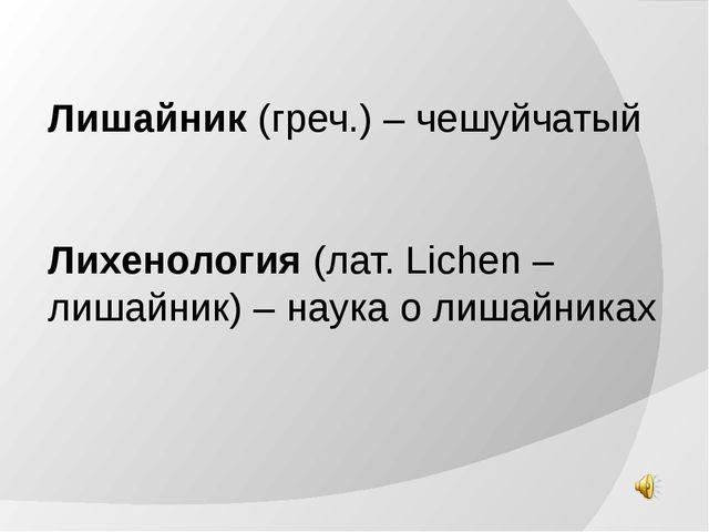 Лишайник (греч.) – чешуйчатый Лихенология (лат. Lichen – лишайник) – наука о...