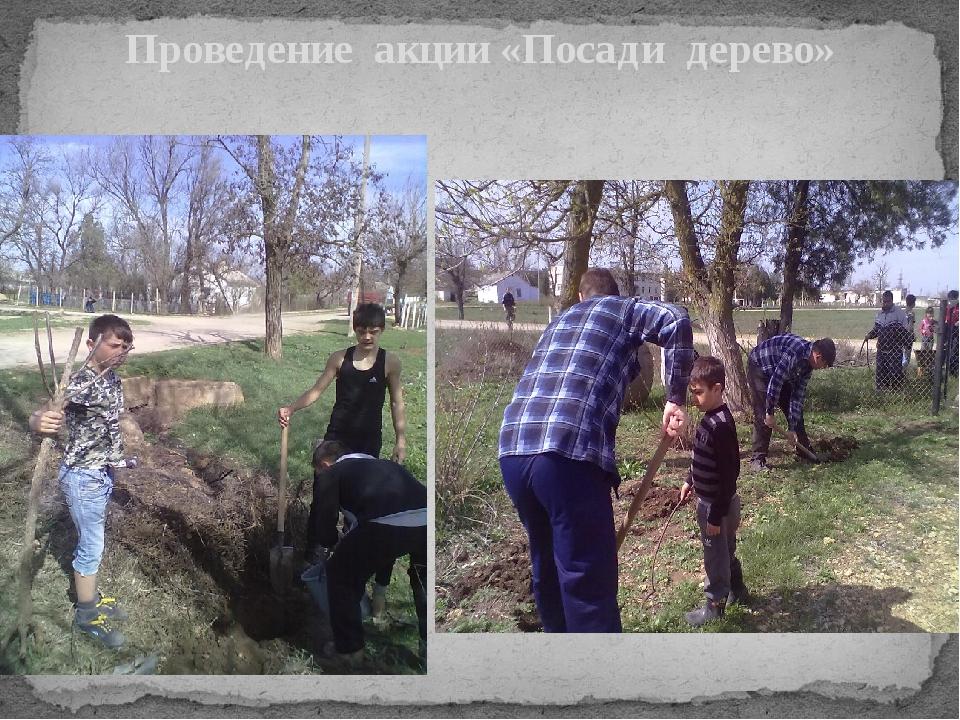 Проведение акции «Посади дерево»