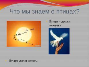 Что мы знаем о птицах?  Птицы умеют летать. Птицы - друзья человека.