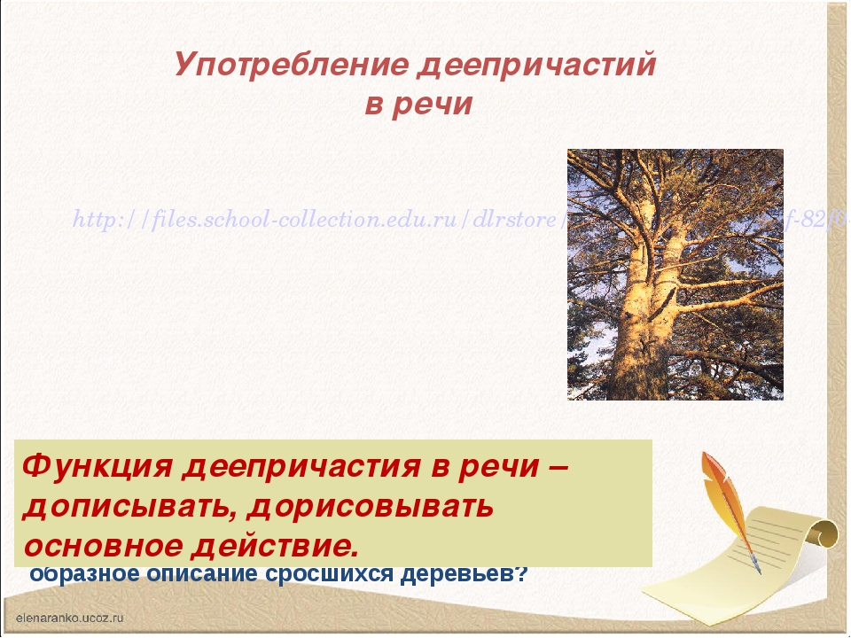 Употребление деепричастий в речи http://files.school-collection.edu.ru/dlrsto...