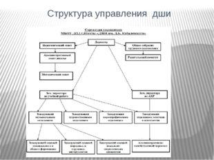 Структура управления дши