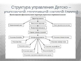 Структура управления Детско – юношеской спортивной школой (дюсш)