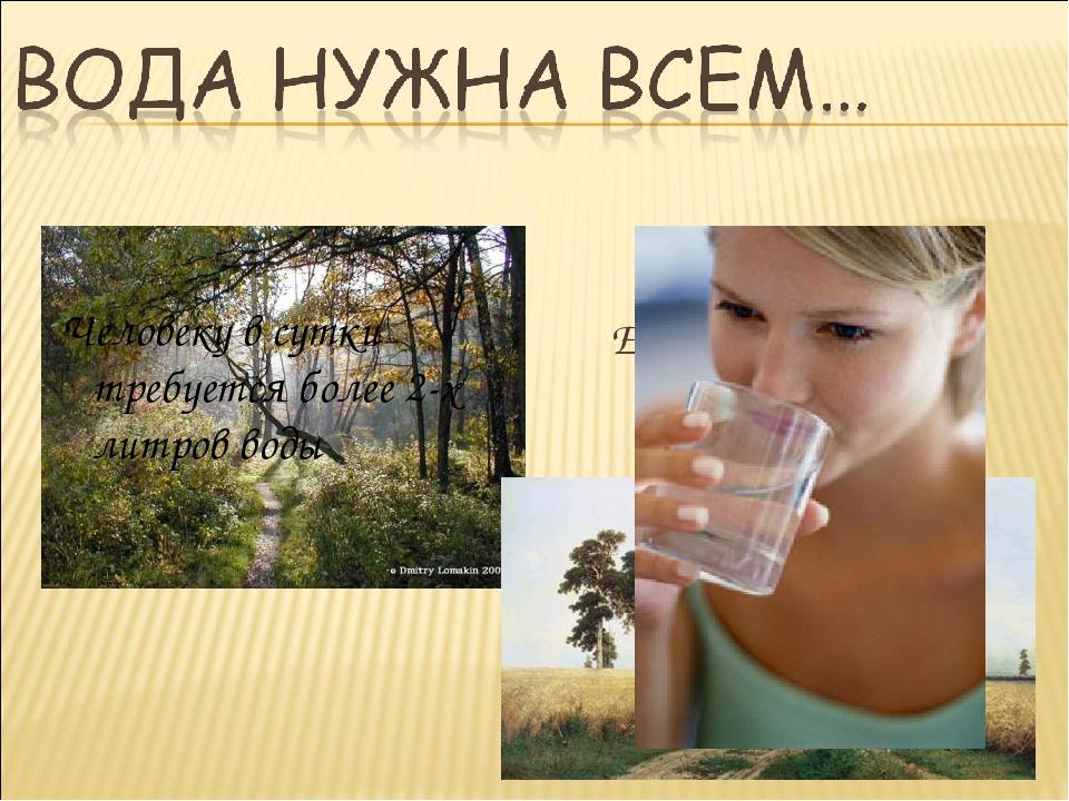 Ее пьют поля и леса Человеку в сутки требуется более 2-х литров воды