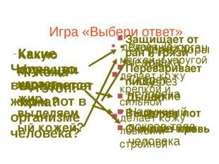 Игра «Выбери ответ» Кожа – это… Важный орган человека Скелет человека Наружны