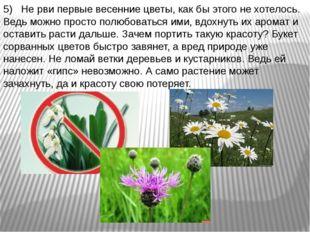 5) Не рви первые весенние цветы, как бы этого не хотелось. Ведь можно просто