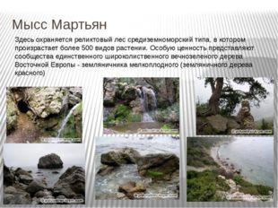 Мысс Мартьян Здесь охраняется реликтовый лес средиземноморский типа, в которо