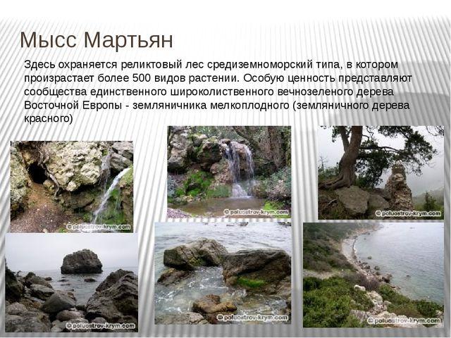 Мысс Мартьян Здесь охраняется реликтовый лес средиземноморский типа, в которо...