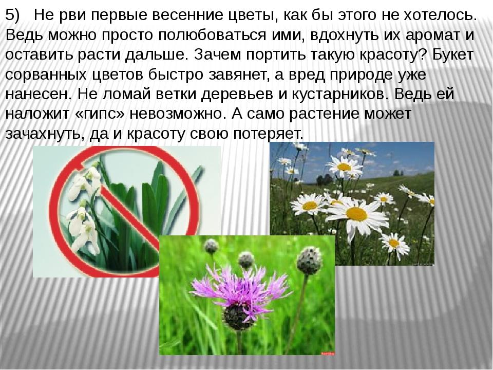 5) Не рви первые весенние цветы, как бы этого не хотелось. Ведь можно просто...