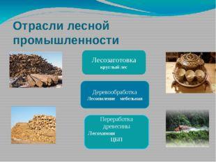 Отрасли лесной промышленности Лесозаготовка круглый лес Деревообработка Лесоп