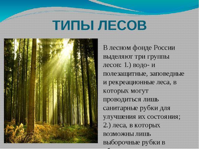 ТИПЫ ЛЕСОВ В лесном фонде России выделяют три группы лесов: 1.) водо- и полез...