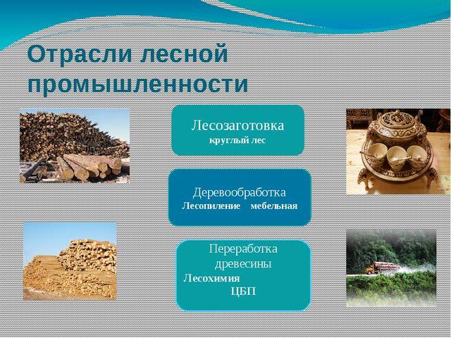Отрасли лесной промышленности Лесозаготовка круглый лес Деревообработка Лесоп...