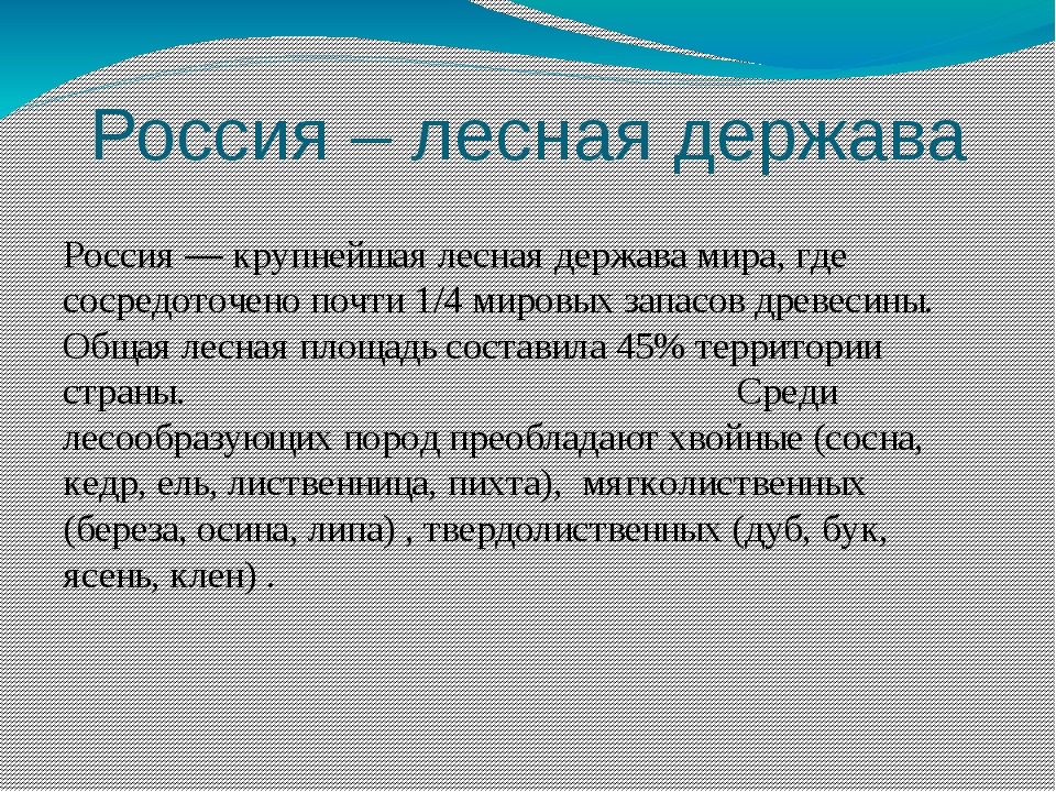 Россия – лесная держава Россия — крупнейшая лесная держава мира, где сосредот...