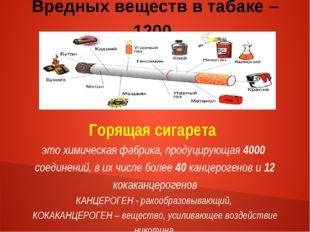 Вредных веществ в табаке – 1200. Горящая сигарета это химическая фабрика, про