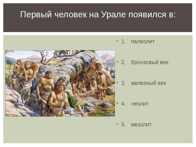 1.палеолит 2.бронзовый век 3.железный век 4.неолит 5.мезолит Первый чел...