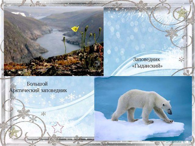 Большой Арктический заповедник Заповедник «Гыданский»