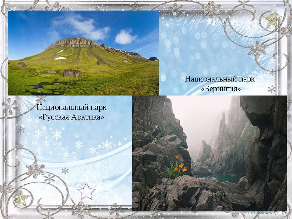 Национальный парк «Русская Арктика» Национальный парк «Берингия»