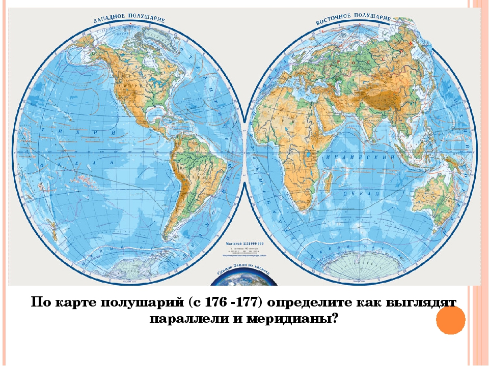 По карте полушарий (с 176 -177) определите как выглядят параллели и меридианы?