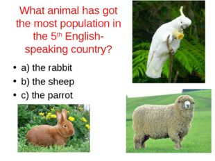 What animal has got the most population in the 5th English-speaking country?