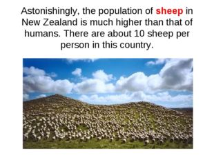 Astonishingly, the population of sheep in New Zealand is much higher than tha