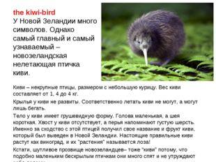 the kiwi-bird У Новой Зеландии много символов. Однако самый главный и самый у