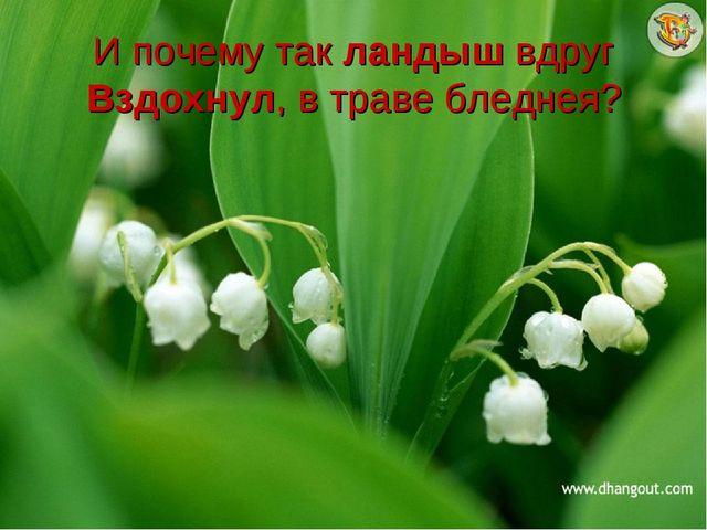 И почему так ландыш вдруг Вздохнул, в траве бледнея?