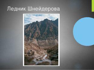 Ледник Шнейдерова