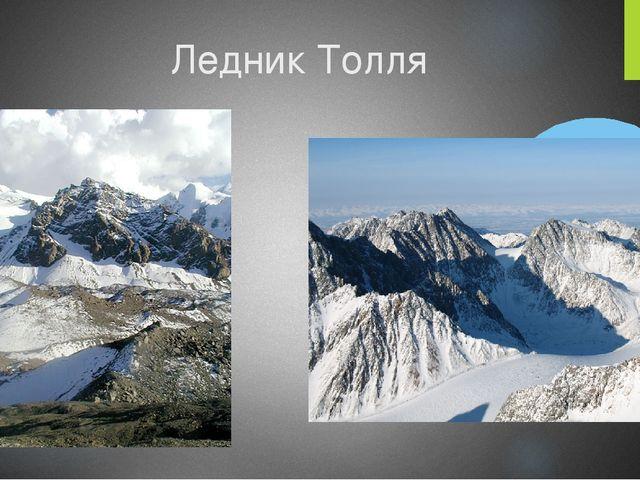 Ледник Толля