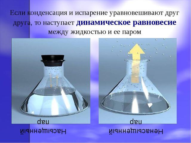 Если конденсация и испарение уравновешивают друг друга, то наступает динамиче...
