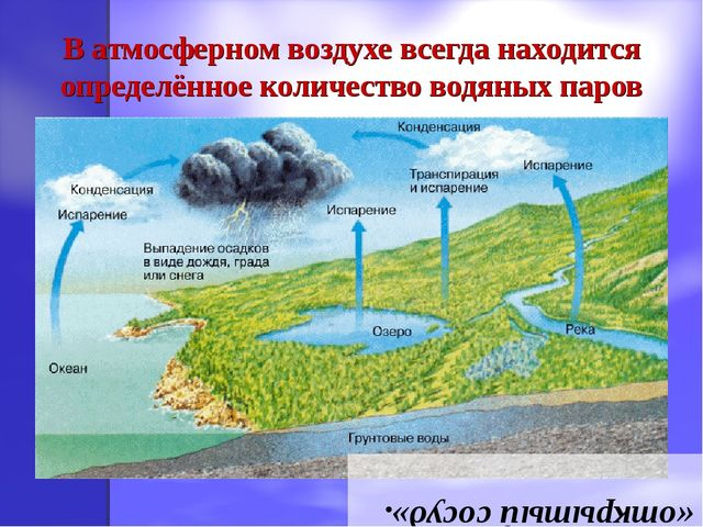 В атмосферном воздухе всегда находится определённое количество водяных паров...