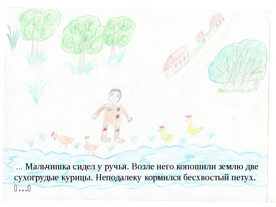 … Мальчишка сидел у ручья. Возле него копошили землю две сухогрудые курицы....