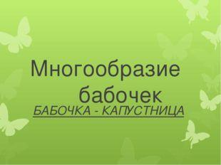Многообразие бабочек БАБОЧКА - КАПУСТНИЦА