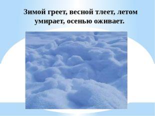 Зимой греет, весной тлеет, летом умирает, осенью оживает.
