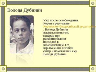 Володя Дубинин Уже после освобождения Керчи в результате Керченско-Феодосийск