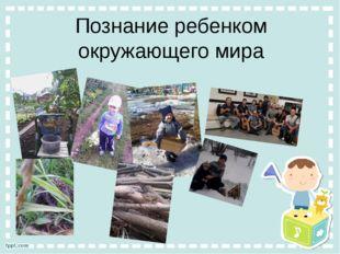 Познание ребенком окружающего мира